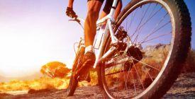 Na kole posílíte nohy, ale trpí záda. Proto je důležitý správný posed