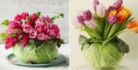 Jak si z obyčejné hlávky zelí jednoduše vytvořit originální vázu